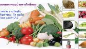 จัดจำหน่าย วัตถุดิบสำหรับทำขนม ผักและผลไม้ สมุนไพร และถ่านไม้